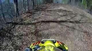 8. Suzuki quad-sport 250 wheelies
