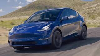 Tesla Model Y and Y You Should BUY A Model Y Today!