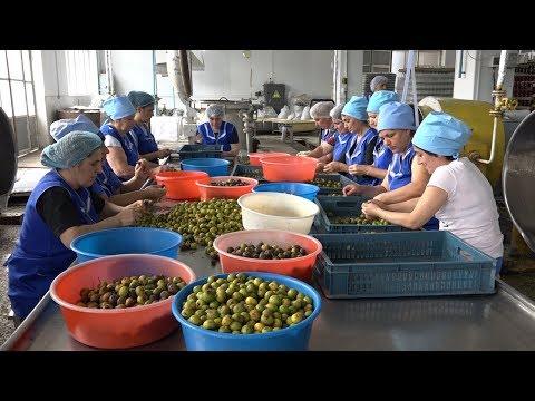 Աշխատողների ավելացում և արտադրության ընդլայնում սահմանամերձ Այգեձոր համայնքում - DomaVideo.Ru