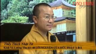 Kinh Vô Lượng Thọ 3 -  48 Lời Nguyện Của Đức Phật A Di Đà - Thích Nhật Từ