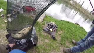 Fischen an der Aare [ am Kanal ] auf Karpfen es gab aber nur einen Döbel !!