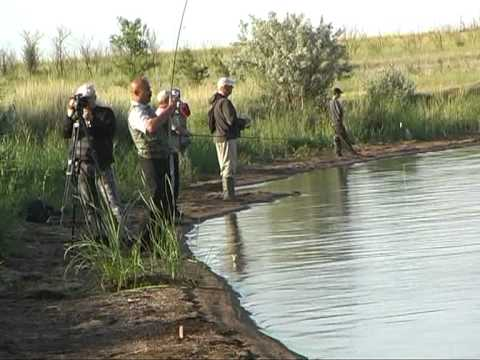 рыбалка в экибастузе на канале