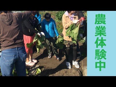 小寺市民農園de農業体験★ フリースクールForLife