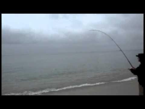 Bluefish Blitz, Seaside Heights, NJ – Oct 2010
