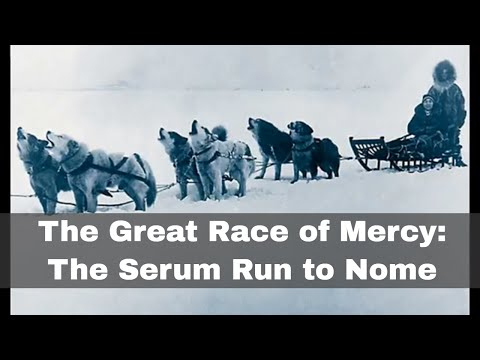 2nd February 1925: Great Race of Mercy diptheria antitoxin dogsled relay