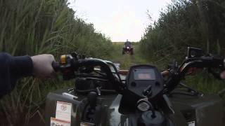 9. Suzuki KingQuad 400ASi (PowerLine Trail) [HD]