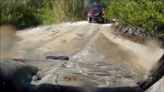 10. rhino & jeeps