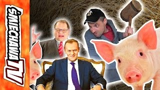 """Świnie """"u Szwagra"""" - Video Dowcip"""