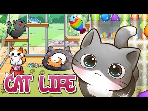 Video of Cat Life