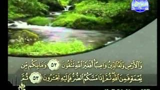 HD المصحف المرتل 14 للشيخ خليفة الطنيجي حفظه الله
