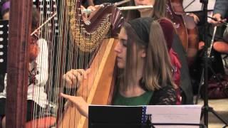 Orchestra – cantarea I