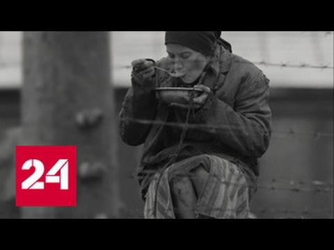 Смотрите думайте плачьте: московской публике показали \Рай\ - DomaVideo.Ru