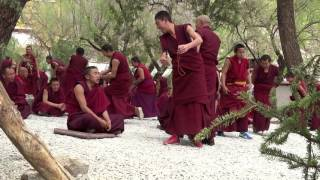 Gasping for Air in Tibet: Buddhist Debate