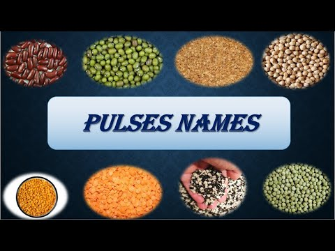Pulses names for kids. Learn pulses names.