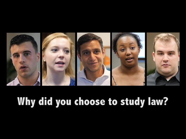 What is the best pre-law major?