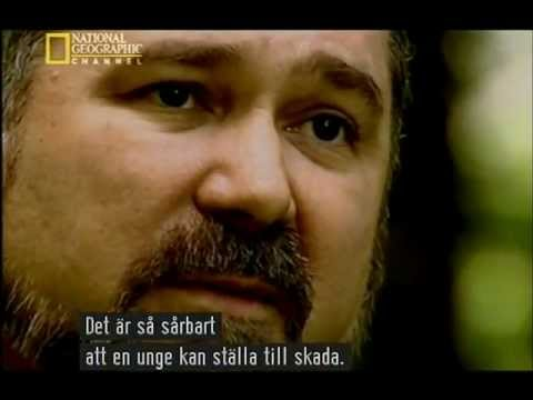 hackers - Language: English Subtitle:Swedish/Svenska.