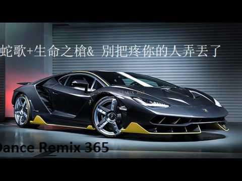 DANCE REMIX 365 - 中文慢搖 vol 294 Dj 2017 (蛇歌+生命之槍& 別把疼你的人弄丟了)