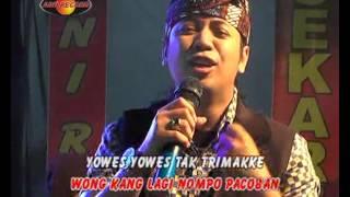 Video Ngenteni Tekamu - Jo Klitik (Official Music Video) MP3, 3GP, MP4, WEBM, AVI, FLV Januari 2018