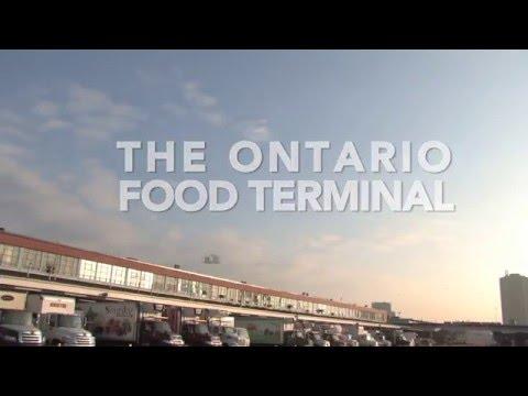 The OFTB (Video)