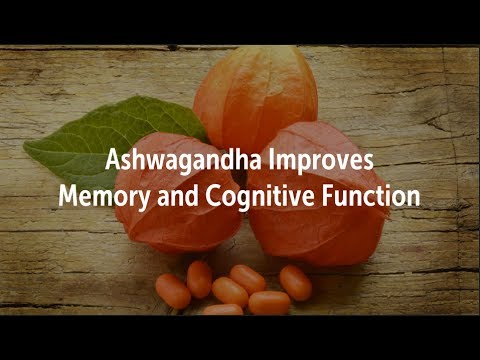 Ashwagandha Improves Memory and Cognitive Function | Brain, Stress, Anxiety, Sleep, KSM 66