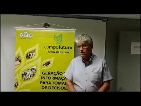 Campo Futuro: Levantamento de custos - Pecuária de Leite / Cascavel (PR)