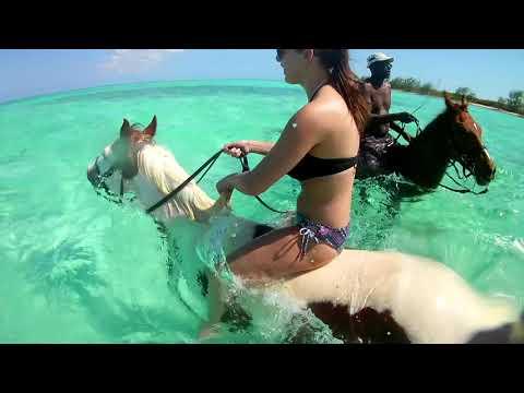 Cayman Islands Horseback Riding