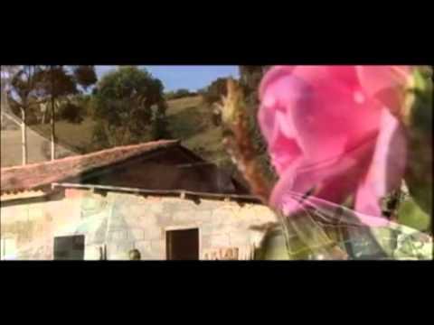 Laços - Documentário audiovisual sobre o Processo de Conquista da Terra em Araponga-MG