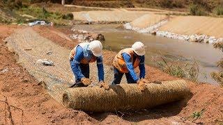 Recuperação de afluentes e margens: entenda a reparação no leito dos rios