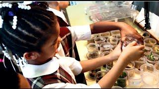 Five Reasons Chicago Needs Charter Schools