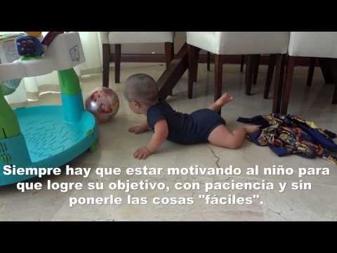 Veure vídeoSíndrome de Down: Estimulación en casa de 8 a 12 meses