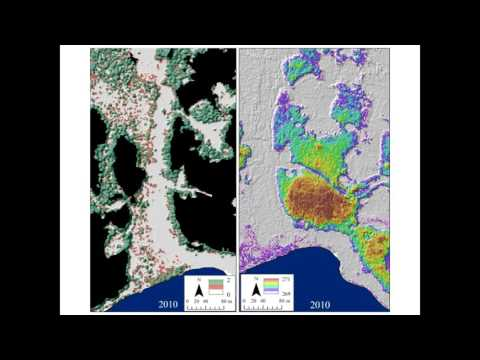 Chasmer Hopkinson permafrost loss
