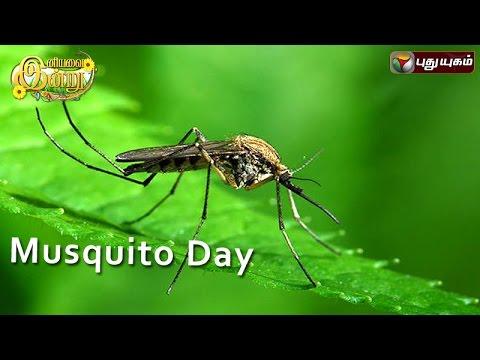 Mosquito-Day-in-Iniyavai-Indru--23-07-2016-I-Puthuyugam-TV
