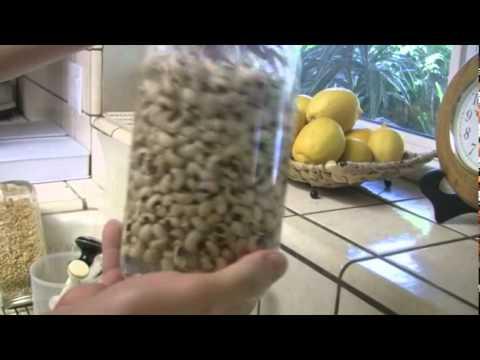 Como hacer germinados - LA VERDAD ETERNA