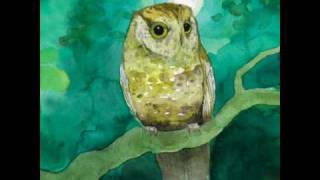Sleeping At Last - Slow & Steady - YouTube