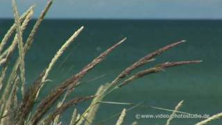 Zingst Germany  city photos gallery : Ostsee Zingst HD