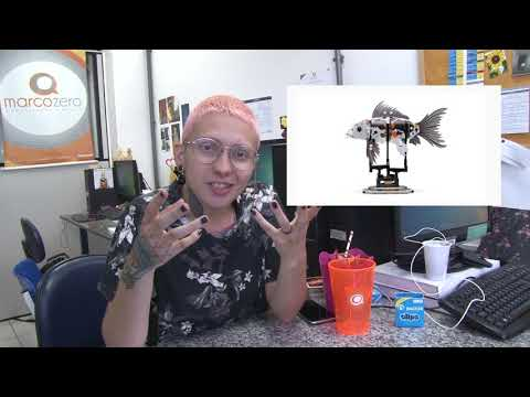 MZ No YouTube! - #3 Peixe de Lego & Marketplace (Mercado e Empresas)