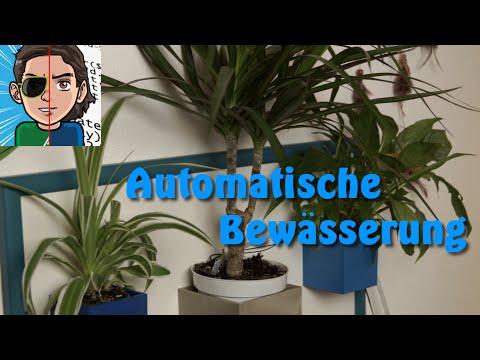 Nie wieder Blumen gießen - Automatische Bewässerung selber bauen