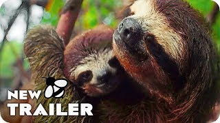 Nonton Earth   One Amazing Day Trailer  2017  Nature Documentary Movie Film Subtitle Indonesia Streaming Movie Download