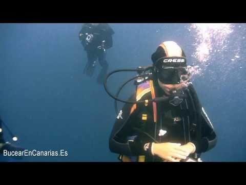 Inmersion en Los Gigantes 25 26 08 10