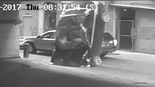 Video Woman Recalls Moment Her BMW Nosedived 7 Stories Off Parking Garage MP3, 3GP, MP4, WEBM, AVI, FLV Oktober 2017