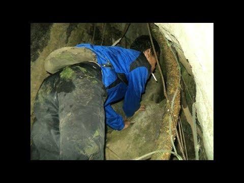 Pencarian Pendaki Yang Hilang Di Gunung Cikuray 5 Tahun Lalu