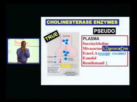 Speed Pharmacology
