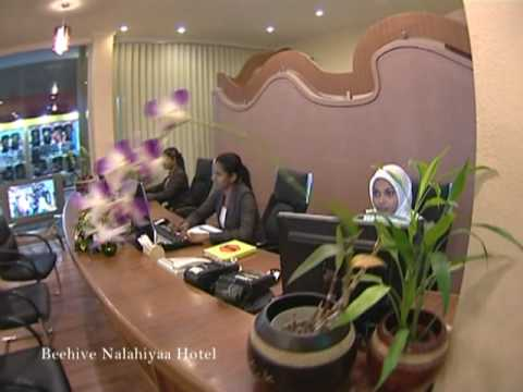 Video Beehive Nalahiya Hotelsta