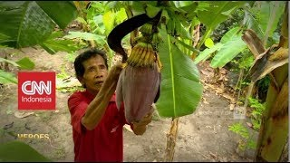 Download Video Profesor Pisang dari Dusun Ponggok | CNN Indonesia Heroes MP3 3GP MP4