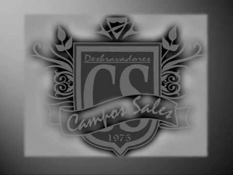 Desbravadores Campos Sales (caminhada Ibiúna)