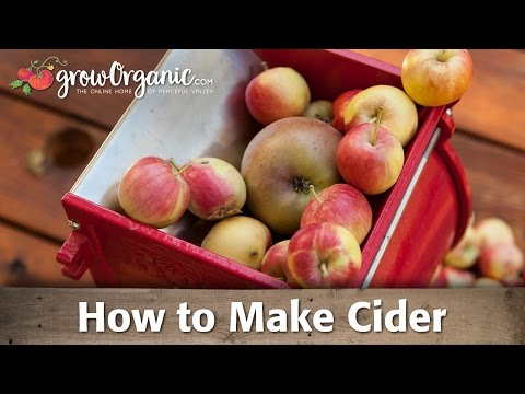 How to Make Cider