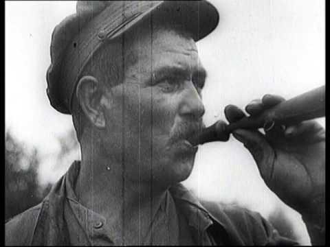 Генерал Андрей Шкуро (видео)