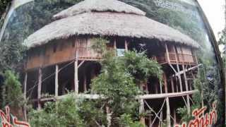 Tree House Hideaway - Chiang Mai