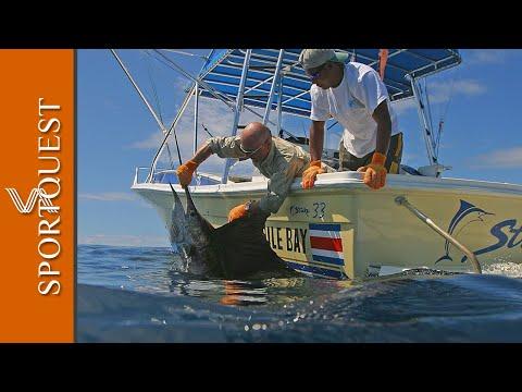 Mind Blowing Big Game Fishing Action at Crocodile Bay Resort Costa Rica