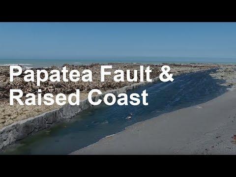 Nueva Zelanda: video de la costa emergida más de 1,5m tras el terremoto de magnitud 7,8 [ENG]